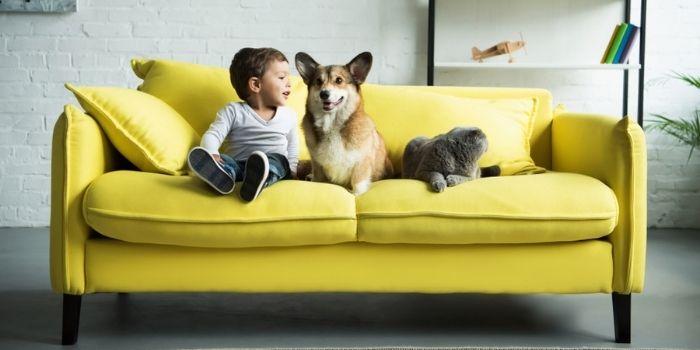 Inhabitr Sofa